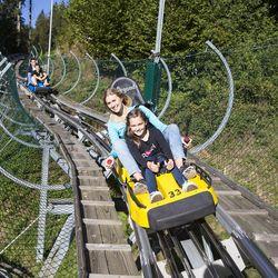 Arena Coaster, Zillertal Arena
